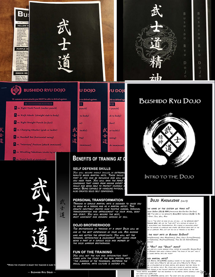 Martial Arts, Krav Maga Skills Books, Self Defense